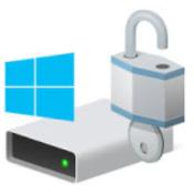 Windows 10 Bitlocker Icon