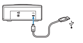 graphic of how to plug in a usb cord