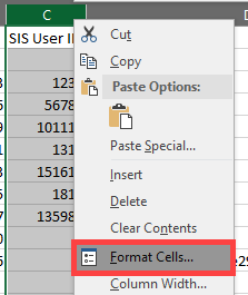 Choose Format Cells from the dropdown