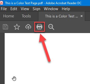 Click the Print Icon