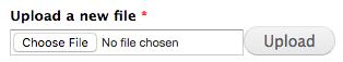 Choose File button