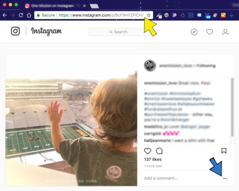 Screenshot of Instagram post in browser with arrows noting the ellipsis menu and URL