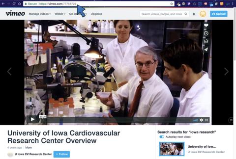 Screenshot of Vimeo video website, noting URL