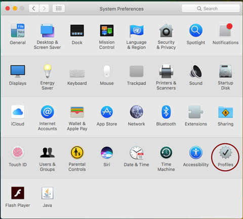 system preferences menu with red circle around network profiles section in lower right