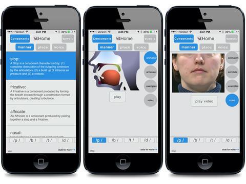 Sounds of Speech custom built application sample photo