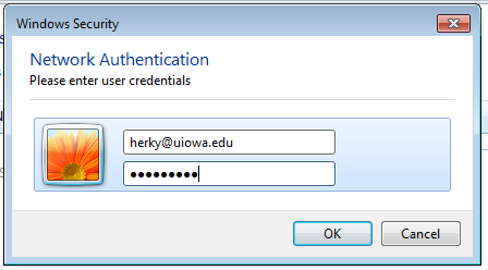 Network Authentication Dialog