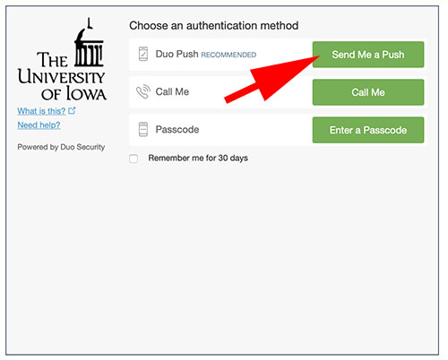 Screenshot showing choice of authentication methods.